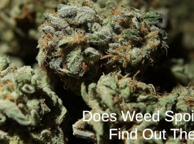 spoiled weed