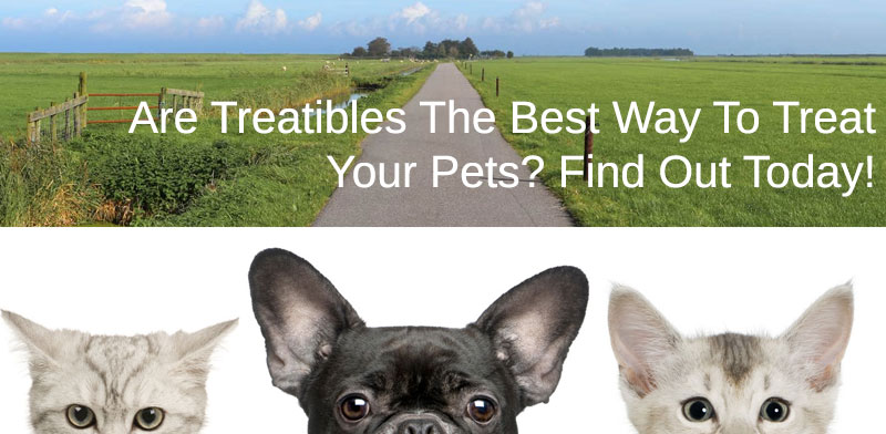 treatibles pet products