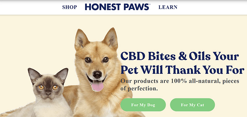 Honest Paws Reviews